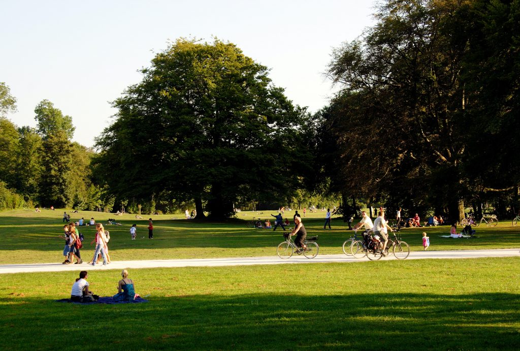 A park with grass, a path and trees. People are sitting on the grass and cycling on the path.